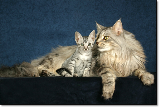 A photograph of Faust and Mephistopheles
