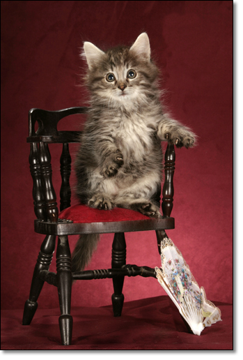 A photograph of Now what?