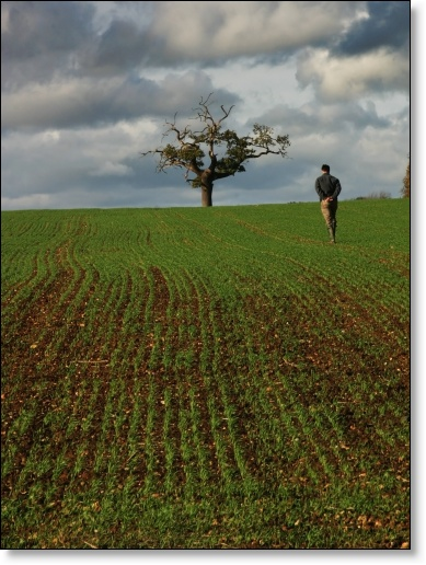 A photograph of Lonely Farmer