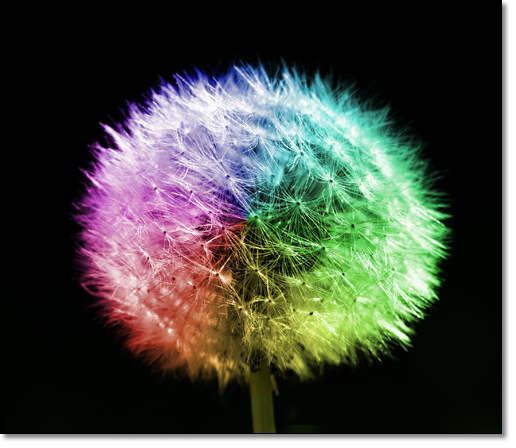 A photograph of Rainbow Mood